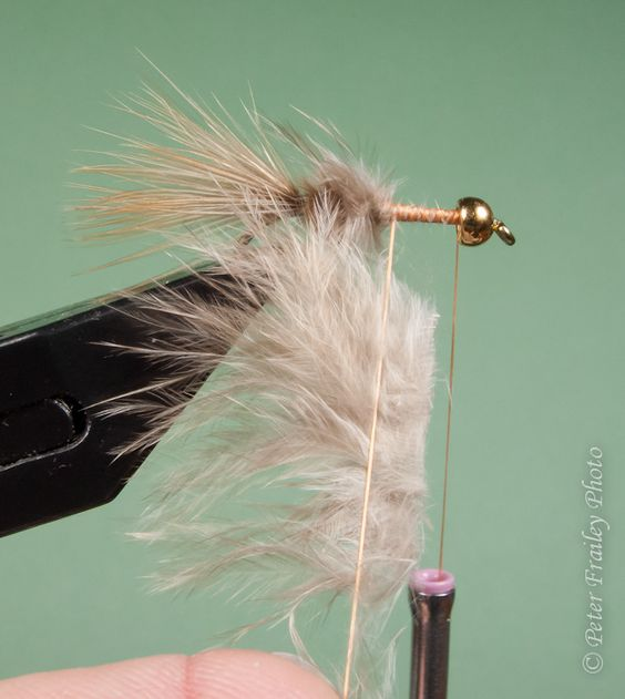 "fishing with flies :: blog: step-by-steps for the ""one feather fly, Fly Fishing Bait"