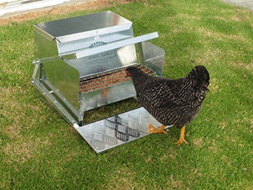 Amazon Com Grandpa S Feeders Automatic Chicken Feeder Sturdy Galvanized Steel Poultry Feeders Rat Automatic Chicken Feeder Poultry Feeders Chicken Feeder