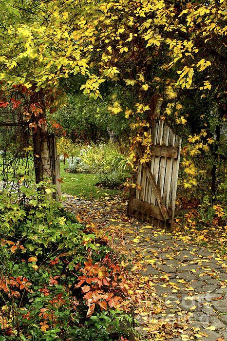 The Garden Gate @ http://www.themuddykitchen.com/