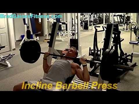 Bodybuilding Chest Exercises Youtube Images