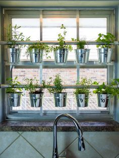 How to Make a Hanging Window Herb Garden >> http://www.hgtvgardens.com/herb- garden/window-mounted-hanging-herb-garden?soc=pinterest | Pinterest |  Hanging ...