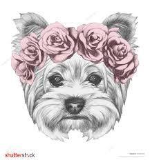 Resultado de imagem para dogs posters illustration yorkshire
