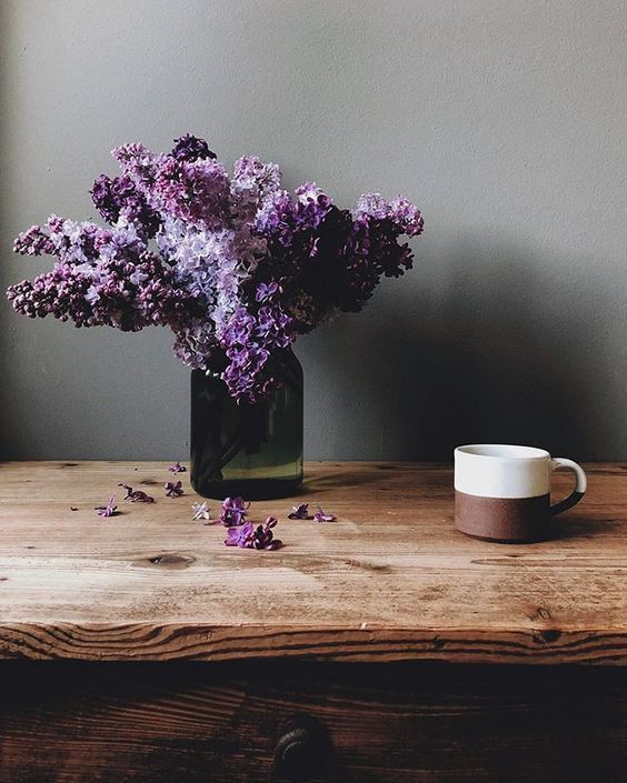 To Wander And Marvel In 2020 Lilac Flower Aesthetic Flower Essences