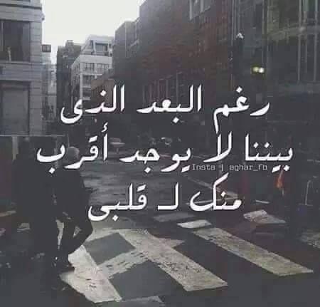 رغم البعد الذي بيننا لا يوجد أقرب منك لقلبي Love Words Arabic Love Quotes Love Quotes Wallpaper