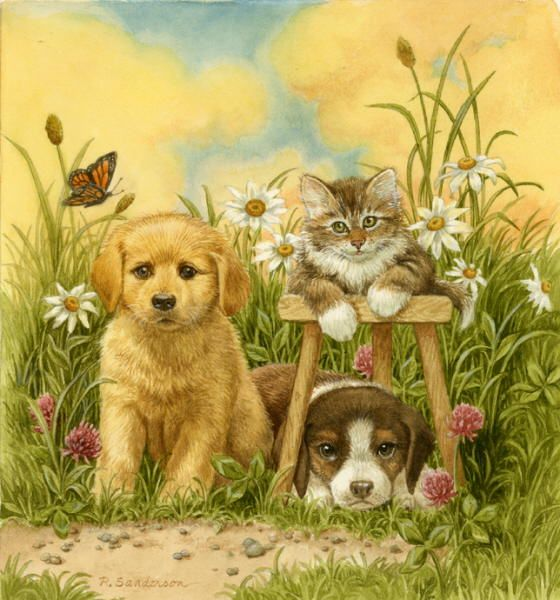 Image result for 3 dogs and a cat painting
