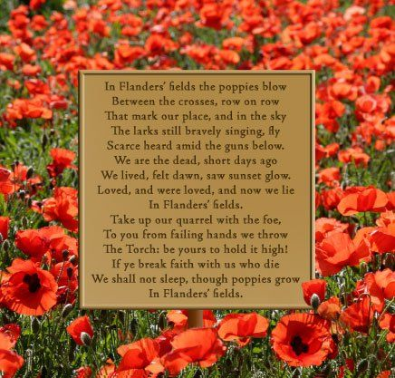 How to write a poem about remembrance day poppy