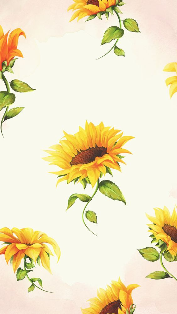 Flowers Sunflowers Nature Flower Power Flower Lovers Pastel