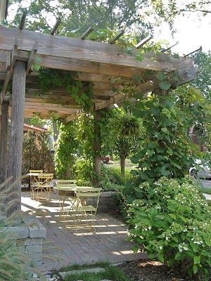 Garden Ideas For Shaded Areas