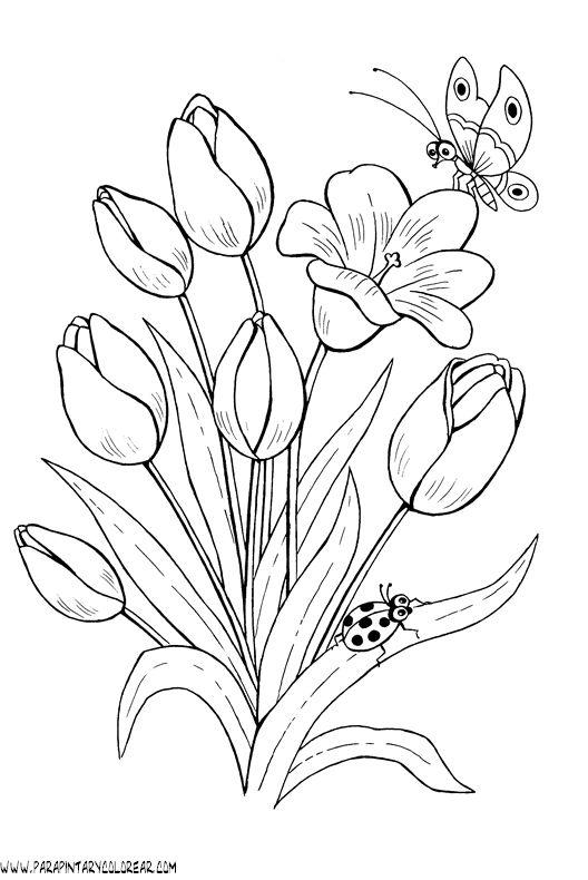 dibujos,para,pintar,de,flores,tulipanes,019
