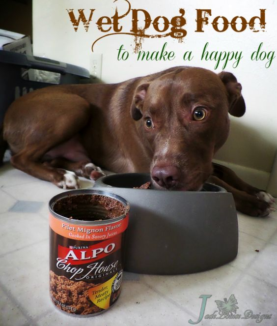 ALPO® Dog Food that makes tails wag! #sponsored