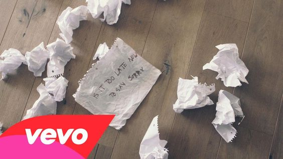 Justin Bieber - Sorry (Lyric Video)? Love this song but NOT Justin Beiber