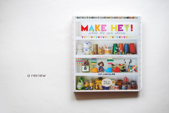 Review diy amp craftiness pinterest book reviews sun shine and