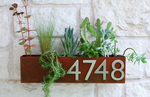 Plantas en el número de la puerta.