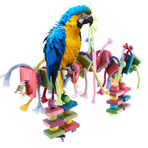 Big Bird Parrot Play Stand Cockatoo Macaws Gym Perch Knots Block Chewing Toy Parrot Pet Bird Supplies Parrot Play Stand
