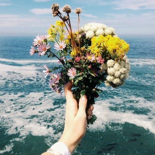 bouquet flor selvagem
