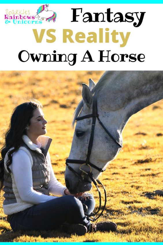 Do you know what it's like to own a horse? Or do you just have your  ideas of what you think it is like? This post is a reality check to  people's fantasy about horse ownership, especially to non-horsey people!  #realityofowningahorse