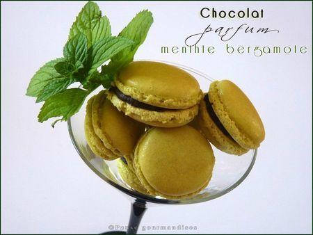 macarons chocolat menthe bergamote (11)