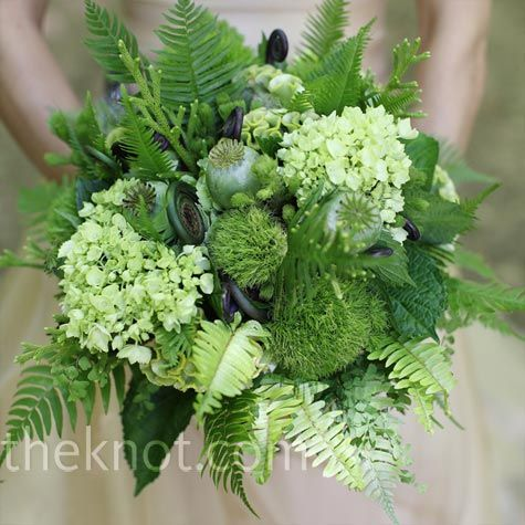 Various ferns and grasses were mixed with hydrangeas and poppy pods to create the bride's unique green bouquet.: