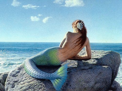 Mermaids - Mermaids Photo (14647304) - Fanpop fanclubs