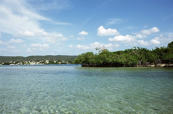 Cayo Aurora (Gilligan's Island), Guanica, Puerto Rico  Cayo Aurora, also known as Gilligan's Island, is a local favorite, beckoning swimmers and picnickers with its lush mangroves and shallow-water beaches