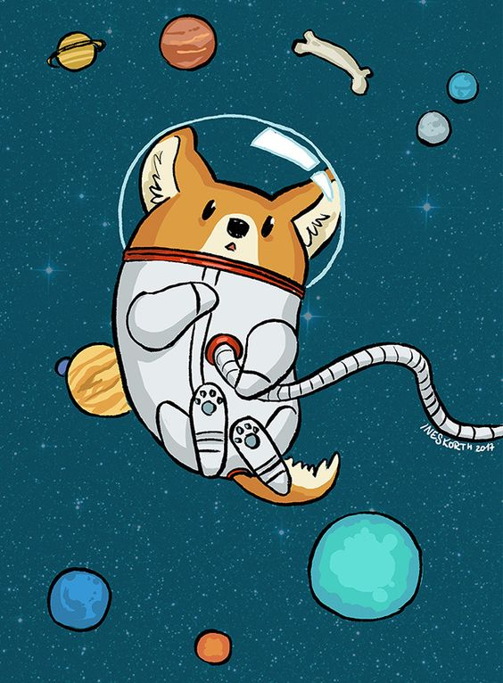 "ineskorth: ""SPACE CORGI """