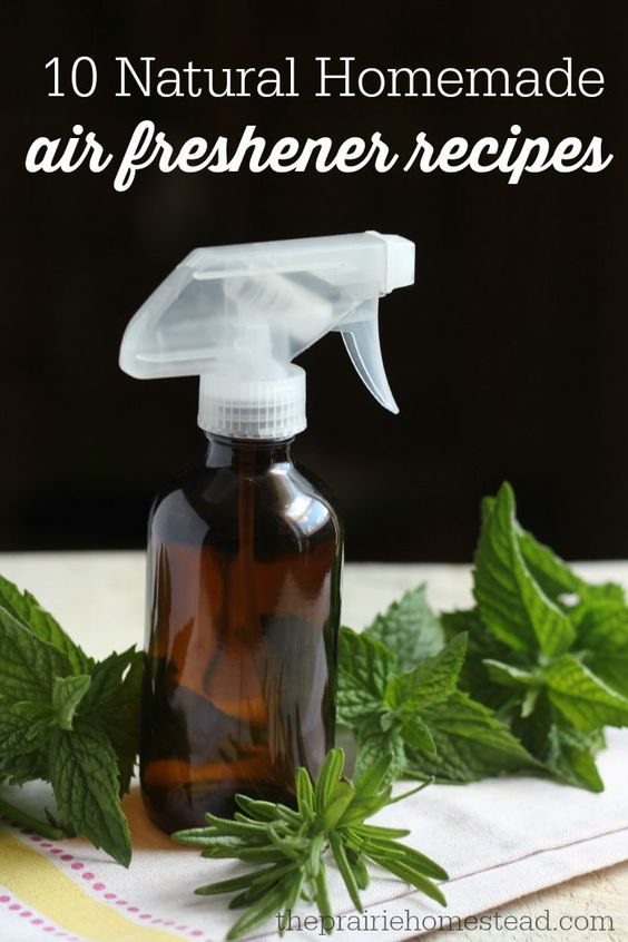 Homemade Air Freshener   DIY   Forget Febreeze and other chemical solutions. Freshen your home naturally.