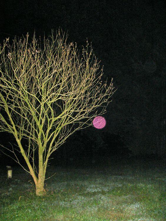 pink orb, #orbs, Joanne Harper, 2012: