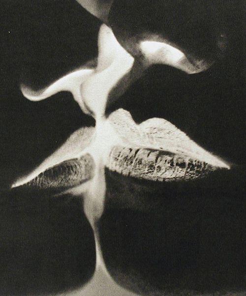Man Ray - The Kiss      Negative Kiss by Man Ray1935