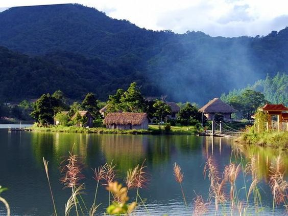 Jianfengling National Park named among China's 10 most beautiful forests - What's On Sanya