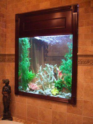 peces xd peceras tanques de peces de acuarios cuencos acuarios de peces vida marina acuarios submarinas fishies acuarios peces de agua salada