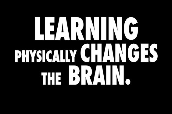 """From ThAutcast: """"When we learn, our brains physically change: we form new connections that anchor new information to what we already know. I believe that the biggest difference between autistic people and others is in how our brains make these connections. This is why I think that we can make the biggest difference in the lives of autistic people by doing a better job of helping us learn."""""""