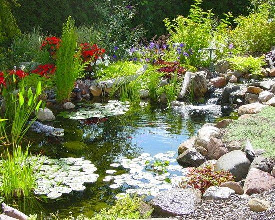 teich im garten pflegen tipps und tricks landschaft Pond - bilder gartenteiche mit bachlauf