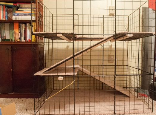 How to build a rabbit cage for under 80 homemade a for Build indoor rabbit cage
