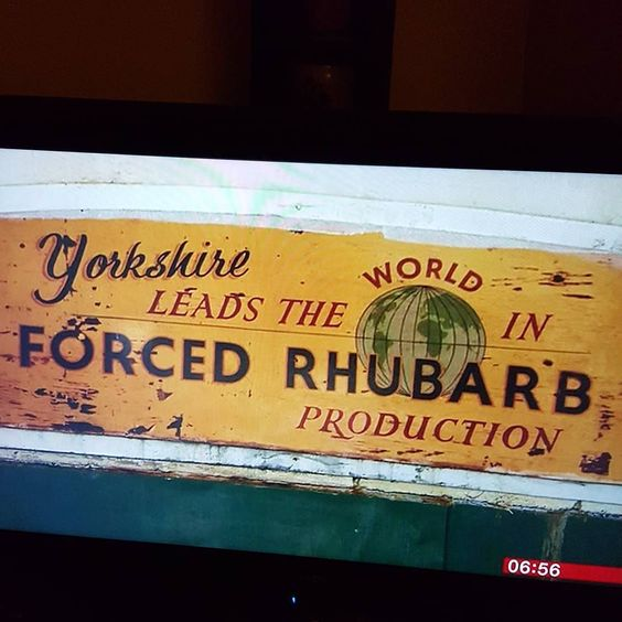 Oldroyd's forced rhubarb sheds in Carlton Rothwell where I live was on BBC Breakfast at 6:50.