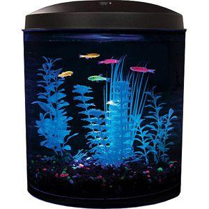 Glofish 3 5 gallon aquarium kit walmart 31 aquarium for Fish tank filter walmart