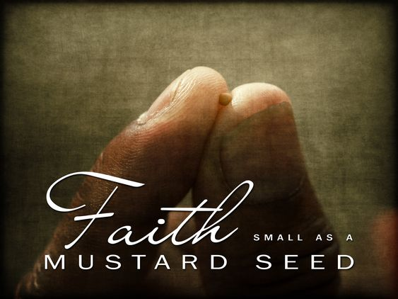 Matthew 17:20 ~With faith the size of a mustard seed.... nothing shall be impossible!: