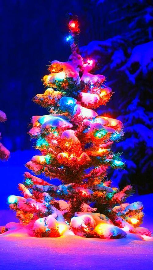 Christmas Phone Wallpaper Wallpaper Iphone Christmas Christmas Tree Wallpaper Christmas Background