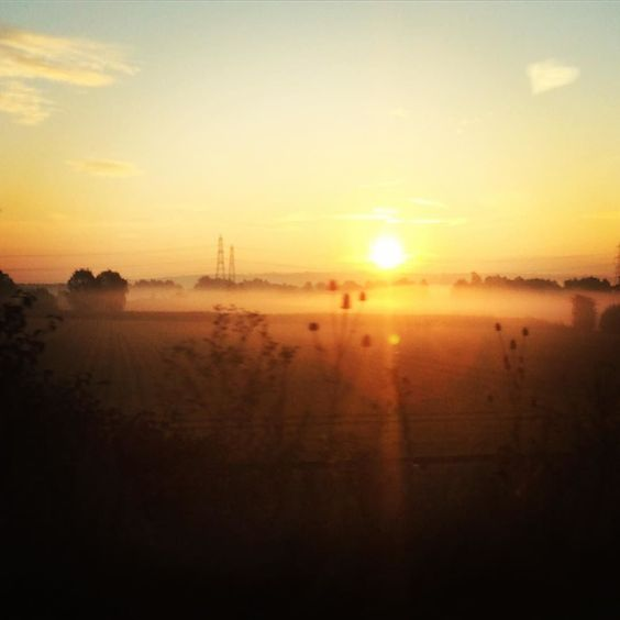 Good morning! There is a beautiful sunrise over misty Essex fields on my journey to London to visit my Dad.