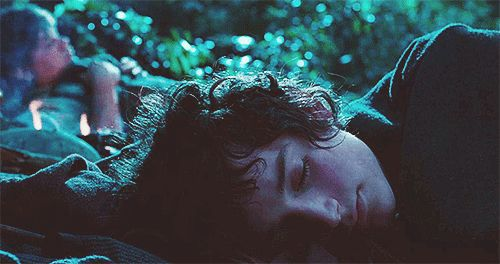 """""""Everywhere I lay, there's a dirty, fat root sticking into my back! I don't think I'll be able to sleep out here, Mr. Frodo."""""""