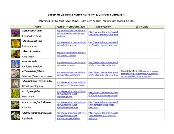 Gallery of california native plants   a