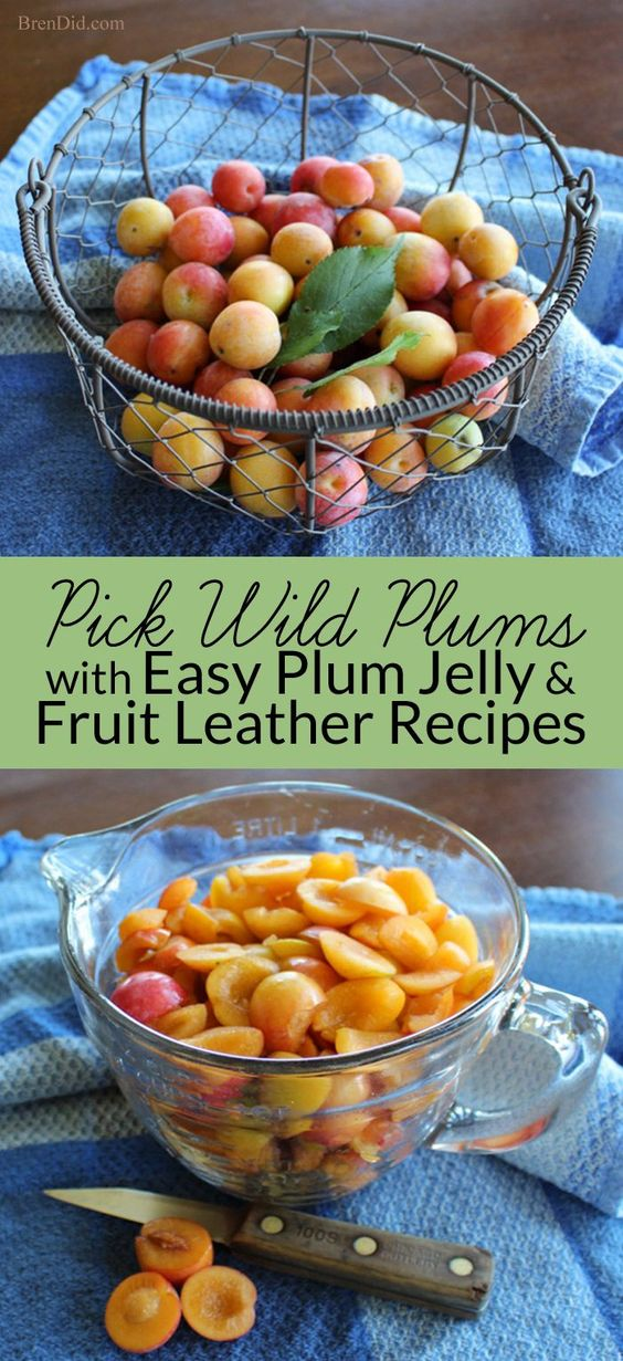 how to make sugar plums