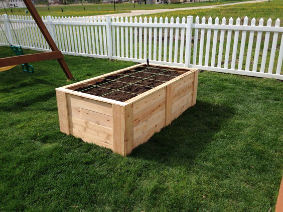 Raised Vegetable Garden On A Budget Made With Cedar Privacy Fencing We Used 18 Boards At