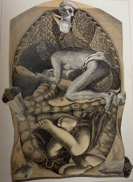 Max Ernst | La Petite Mélancolie: