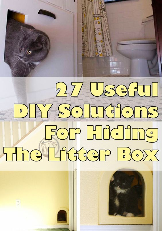 for cat lovers 27 useful diy solutions for hiding the litter box so many cat lovers 27 diy solutions