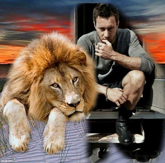 Clever lion!