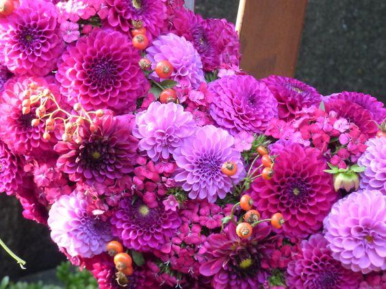 pinke Dahlien an einem schönen Kranz, Melaten - Foto: S. Hopp