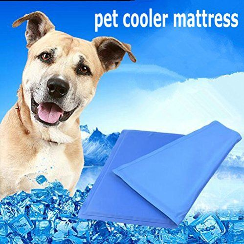 Xulo Keep Pets Cool Prevent Overheating Dehydration Non Sticking Keep Pets Cool Portable Cooling Pad S With Images Dog Cooling Mat Pet Cooling Mat Pets