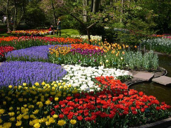 The beautiful Keukenhof gardens in the Netherlands