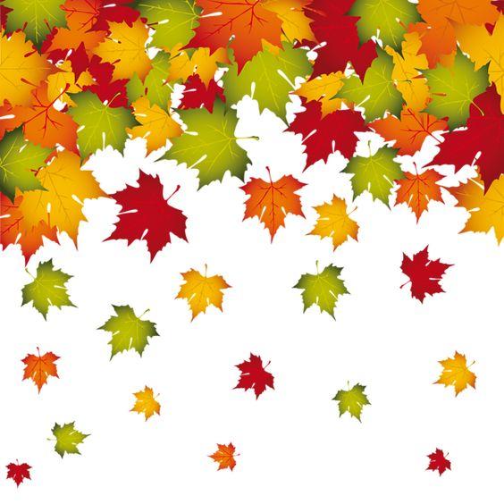 Feuilles d'automne, Feuilles and Décoration on Pinterest