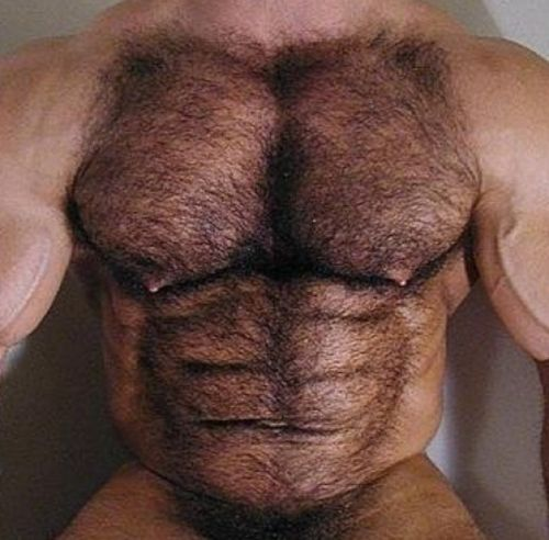 bears and muscled hunks